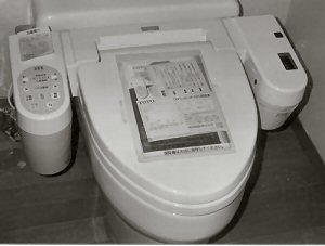 ToTo Toilets | Plumbing Cost and Repair Information